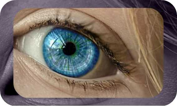 Eye tracking neuromarketing: Facilito